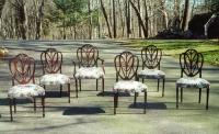 Centennial Set American Shield back chairs