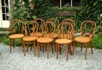Antique Thonet Austrian Bentwood Chairs set of 8