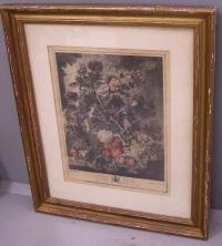 A Fruit Piece Lithograph late 18th early 19th century