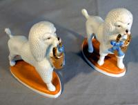 PR Continental blanc de chine porcelain poodle figures on plinths